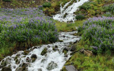 La Suisse, château d'eau de l'Europe