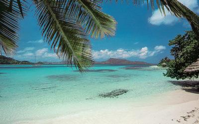 Reviertipp südliche Karibik – Korrigenda